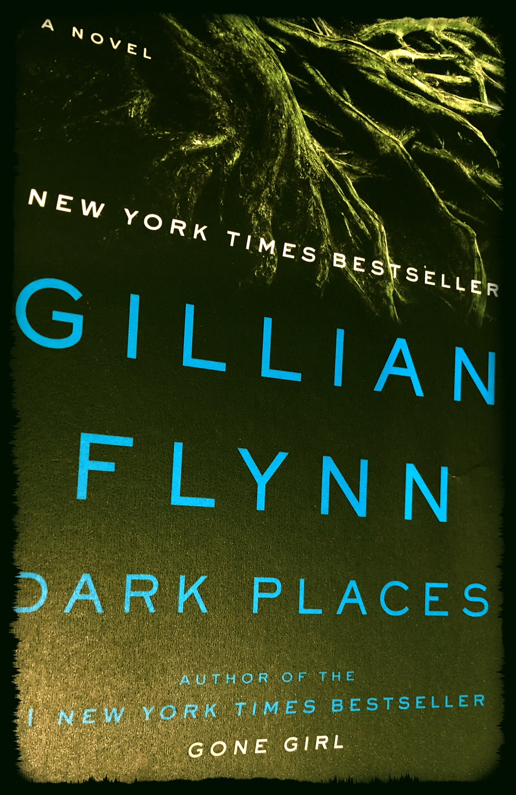 The Nitty Gritty: A Remotely Intellectual Review of Dark Places (by GillianFlynn)